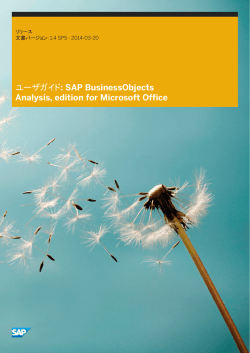 ユーザガイド: SAP BusinessObjects Analysis